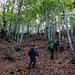 Dabei nutzten wir eine Abkürzung durch weglosen Waldgebiet