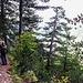 Bis 1800m ging es durch den Wald, teilweise auch übers Geröll