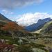 Wieder der Alp Niemet zu