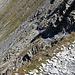 Der zunächst etwas stotzige Abstieg vom Col des Chavannes