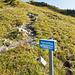 Abzweiger zum Klettersteig Brunnistöckli. Ab hier werden zuerst noch einige Höhenmeter auf normalem Weg absolviert.