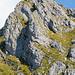 Nochmals das Brunnistöckli von der Hütte aus. In Originalgrösse sieht man viele Leute auf dem Zittergrat Klettersteig. Die Route lässt sich so gut nachvollziehen.