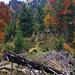 Der T6er-Gipfelgrat der Roten Wand (1.380 m). Skeptiker sprechen auch von einer rustikalen T3 ;-)