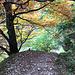Abstiegsweg unterhalb der Ornachalpe