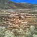 Sommet enneigé du Vorder Berg, encore 200 mètres de dénivelé.