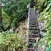 auf einer Treppe wird der Höhenunterschied uberwunden