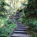 da sind Treppen doch einfacher, aber nicht schöner