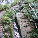 die Stufen stehen mittlerweile freigeschwemmt da, der Wanderweg führt links vorbei