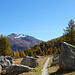 im Tal der Ova da Bernina