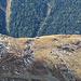 Blick zur Chamanna Paradies - ein lohnendes Ziel auf dem Weg zurück!