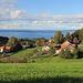 Blick vom Witz-Wanderweg zwischen Heiden und Wolfhalden zum Bodensee,<br />[http://www.appenzellerland.ch/de/witzweg]<br />