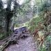 Unterwegs zur Baldenweger Hütte
