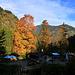 An der Siebenhüttenalm... beim späteren Abstieg von den blauen Bergen gab's natürlich... Blaubeerkuchen... dicke Empfehlung!