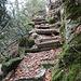 Abstieg auf dem Brunnenstieg.