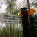 Der Aargauer Kantonshöhepunkt ist mitten im Wald.