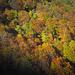 la magia dell'autunno....!!