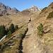 bellissimo ambiente solare ed idilliaco...questa è la montagna che piace a noi!!