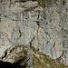 Wir stehen am Einstieg des Tälli-Klettersteiges. In der Vergrösserung sieht man bereits die erste Leiter (Beim POI).