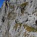 Klettersteig in bestem Ambiente.