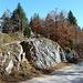 Wanderweg und Alpstrasse liegen in Frieden nebeneinander