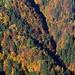 Die Laub- und Nadelbäume bieten ein wahres Farbenspiel.