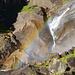 Arc en ciel sur les Vernal Falls