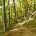 der schöne Aufstiegsweg zum Kloster