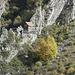 Auf der anderen Talseite befindet sich die Behausung eines Mönches, der hier als Einsiedler lebt.