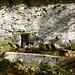 Alter Brunnen von Cavalüm