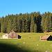 eine typische Appenzeller Alp auf dem Weg zum Schwizerälpli