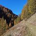 Der schön angelegte Bergweg oberhalb Heiligkreuz
