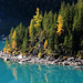 Der Oeschinensee mit bunten Herbstfarben.