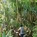 Jacky im Dschungel...