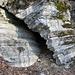 Strati di calcare del Monte Generoso o di Moltrasio.