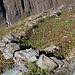 I pochi resti dell' Alpe Gordoncella (1640 mt.)