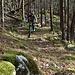 Im unteren Teil wählten wir einen Trail durch den Wald.