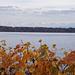 Herbstszenerie am Bielersee in Twann