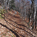 Weg von Lamboing auf den Mont Sujet