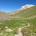 Wanderweg durch Val Minor nach Lagalb.