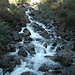 Die Bäche führen für die Jahreszeit viel Wasser - hier der Flibach