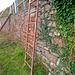 Unterm Kräutergarten über eine kurze Leiter hinunter...