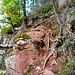 Wer die senkrechte Stelle umgehen möchte, kann das tun: Wer dem Pfad ein paar Meter länger folgt, gelangt zu einem Wegweiser, der auf einen weitaus weniger scharfen Anstieg durch die Bäume aufmerksam macht.