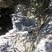 Gamelle mit Leiterlibuch. Ein Gruß an alle Hikrs vom 31.10. <br />Take Care und Gottes Segen, Frankman