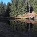 Oberhalb Mornera spiegeln sich die Tannen in einem kleinen Bergsee