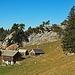 eine Alp auf dem Googeien Hauptsattel