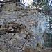 hier fängt der Grat zum Schär Nordgipfel an, eine fast senkrechte Felswand, mit guten Abstufungen/Griffen, ich hatte keine Probleme beim Auf- und Abstieg.