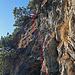 dieses Bild habe ich an der gleichen Stelle wie das letzte Bild aufgenommen, hier gehe ich in der Mitte vom Bild zwischen den Bergkiefersträuchern hinauf zum Gipfel, siehe die rote Linie im nächsten Bild. Ab und zu hat es auch lockere Felsteile dazwischen, - es ist daher sehr wichtig die möglichen Griffe im Fels stets zu überprüfen.