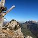 Gipfelstamm mit Schafskopf