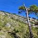Bergsturz-Gebiet