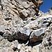 Im Aufstieg vom Refuge de l'Erco zum Monte Cinto - Hier sind wir offenbar mal nicht den cleversten Steinmännchen gefolgt und müssen einen Absatz überwinden, um rechtshaltend wieder auf die Route zu gelangen.